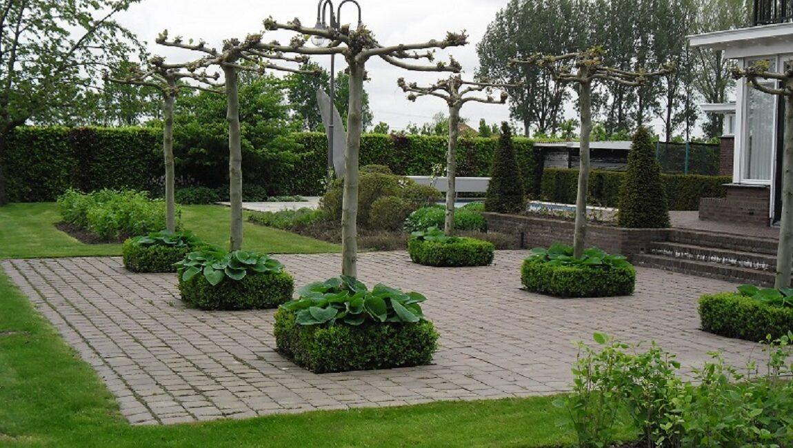 tuin-particulier-onderhoud