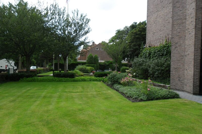 tuin-grasmat-onderhoud